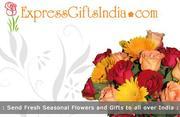 www.expressgiftsindia.com